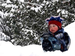 Zijn jouw houten speeltoren én tuin al winterklaar?